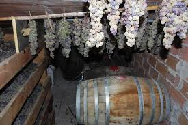 Vin Santo making