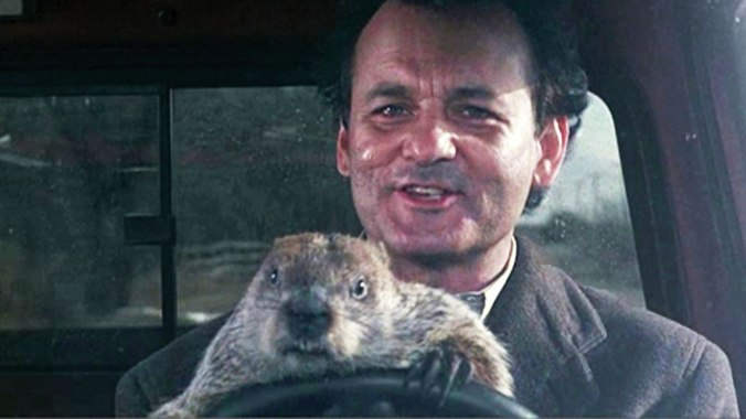 bill-murray-groundhog